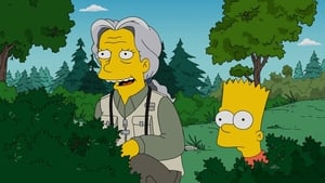 Los Simpson - Looking for Mr. Goodbart episodio 20 online