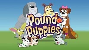 Pound Puppies - 2010