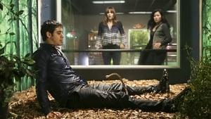 Episodio TV Online Scorpion HD Temporada 1 E18 Lo que no te hace fuerte, te mata
