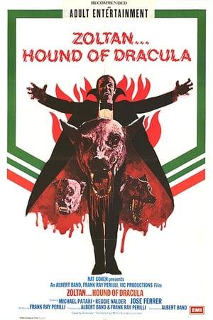 Zoltan - Dracula's Bluthund Film