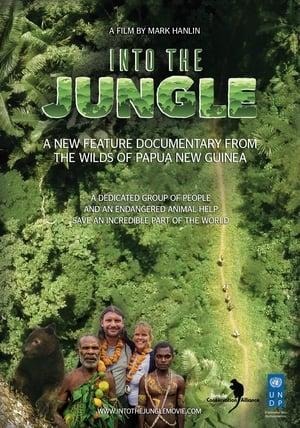 Into the Jungle (2018)