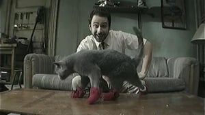It's Always Sunny in Philadelphia Season 5 :Episode 8  Paddy's Pub: Home of the Original Kitten Mittens