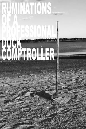 Ruminations of a Professional Dock Comptroller