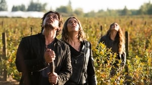 The 100: 6×3