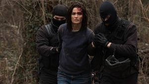 Absentia: 1×10