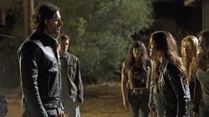 True Blood: 6 Staffel 8 Folge
