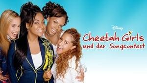poster The Cheetah Girls