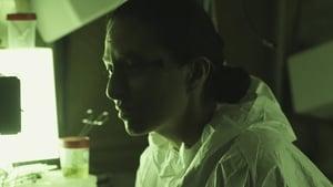 Hipersensoria (2019)