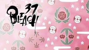 Bleach: 1×37