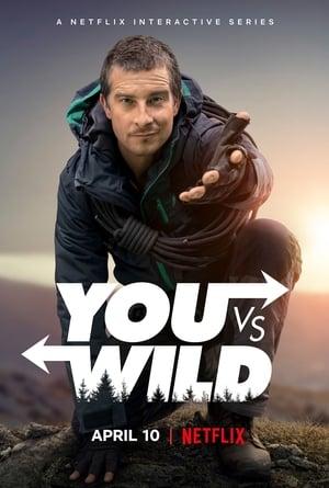 You vs. Wild (2019), serial online subtitrat