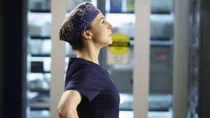Grey's Anatomy: S11E14 1080p Dublado e Legendado