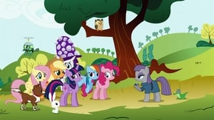 My Little Pony: Friendship Is Magic: 4×18
