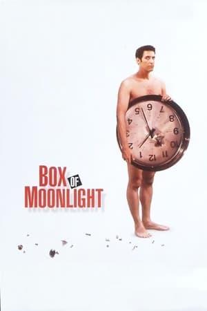 Box of Moonlight-John Turturro