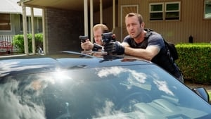 Hawaii Five-0: 8×8