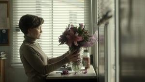 Loreak – Flowers – Λουλούδια