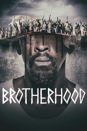 Brotherhood – Organizația Frăției (2019)