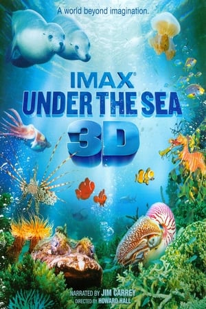 Image Under the Sea 3D
