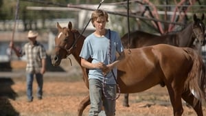 Lean on Pete [2018]