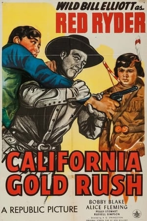 Image California Gold Rush