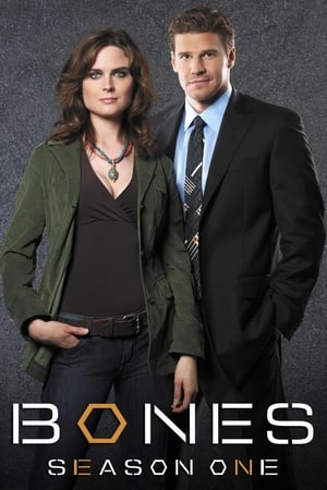 Watch Bones Season 1 Online Free GoMovies | 123Movies