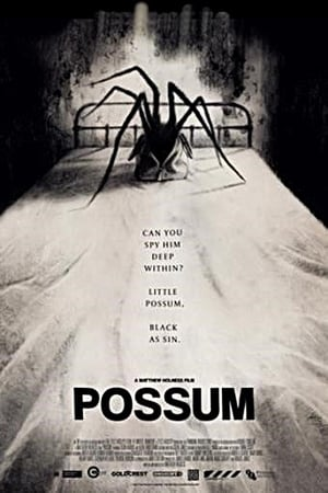 Постер фильма Опоссум
