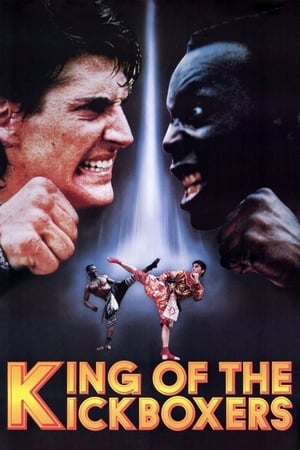 Play The King of the Kickboxers