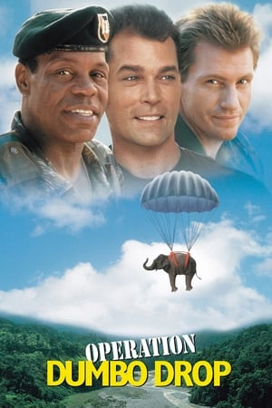 Operation Dumbo Drop-Danny Glover