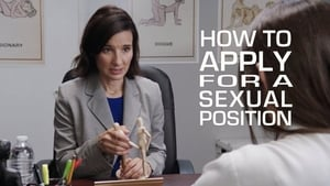 How to Apply for a Sexual Position (2017)