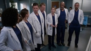 Grey's Anatomy Season 14 : Harder, Better, Faster, Stronger