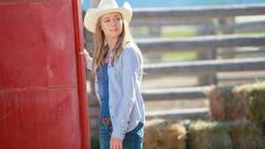 Heartland Season 8 :Episode 6  Steal Away