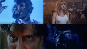 Werewolf (1995) Online Cały Film CDA