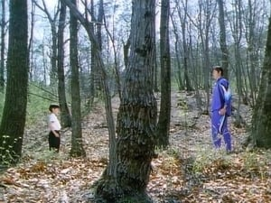 Super Sentai Season 21 : I'll Protect It! The Mysterious Boy's Forest