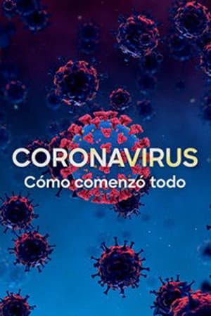 poster Coronavirus: The Silent Killer