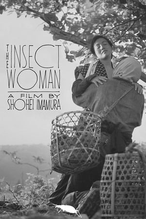 Poster The Insect Woman (1963)