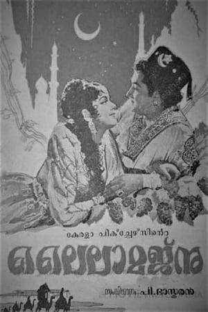 Laila Majnu (1962)