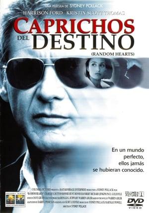 Caprichos del destino (1999)