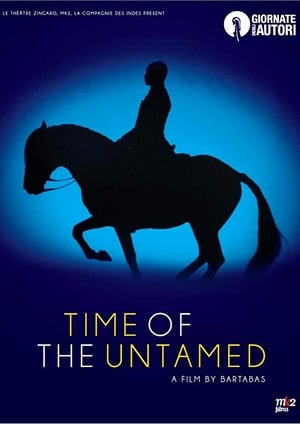 Time of the Untamed poster