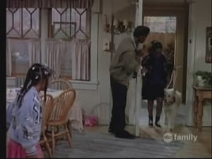 Family Matters 1×13