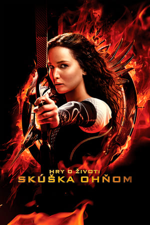 poster The Hunger Games: Catching Fire