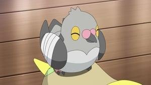 Pokémon: 23×29