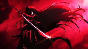 poster Akame ga Kill!