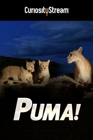 Puma! (2015)
