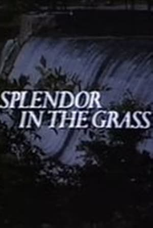 Splendor in the Grass