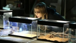 Now you watch episode Under My Skin - CSI: Crime Scene Investigation