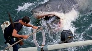 Captura de Tiburón (1975) HD 1080p Latino