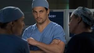 Grey's Anatomy: 14×19