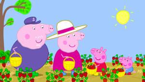 Watch S6E16 - Peppa Pig Online