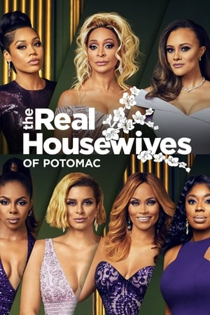 The Real Housewives of Potomac Season 5 Episode 16