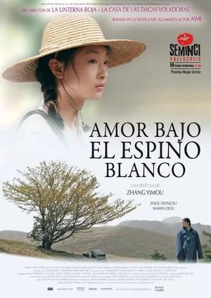 Ver Amor bajo el espino blanco (2010) Online