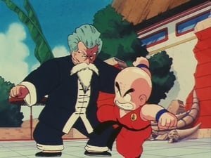Dragon Ball: 1×24